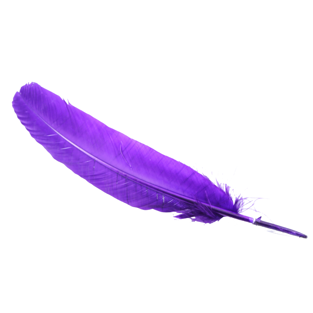 Feather clipart colourful feather. Violet objects png transparent