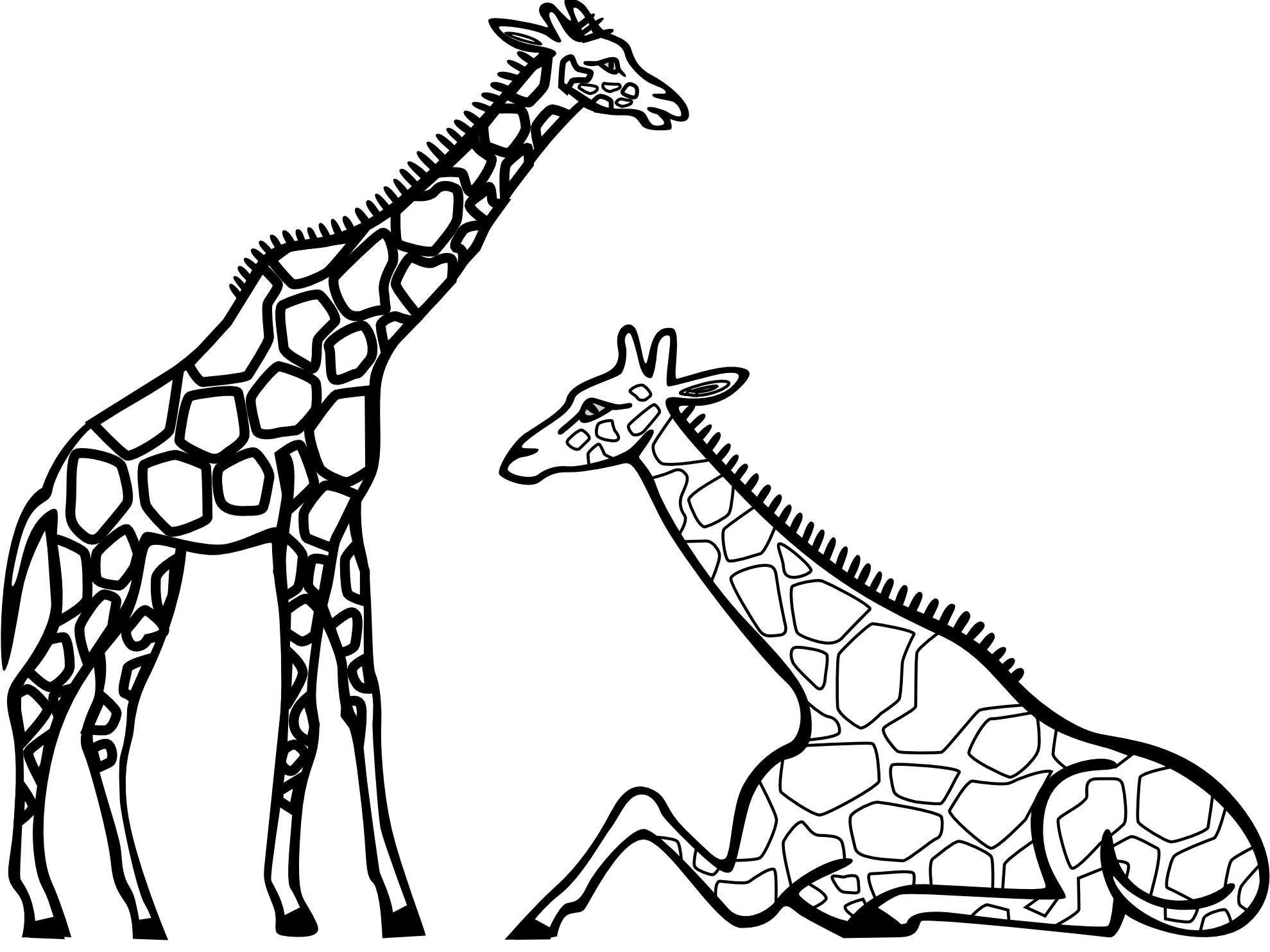 Giraffe clipart terrestrial animal. Zebra black and white