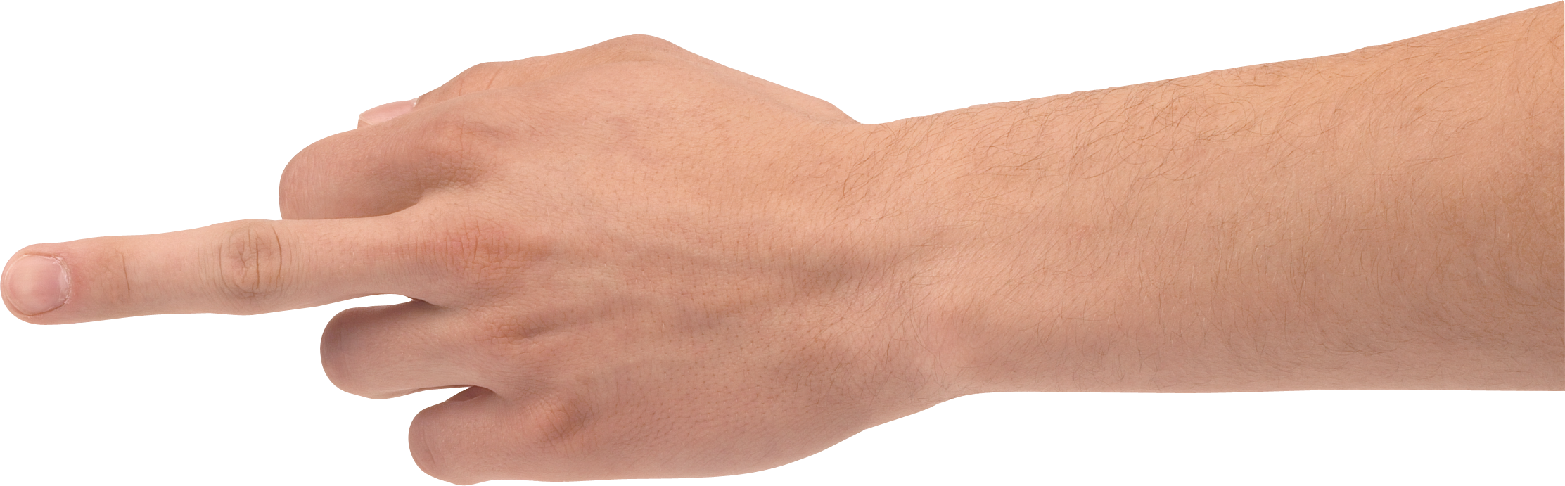 Forty seven isolated stock. Hands clipart forearm