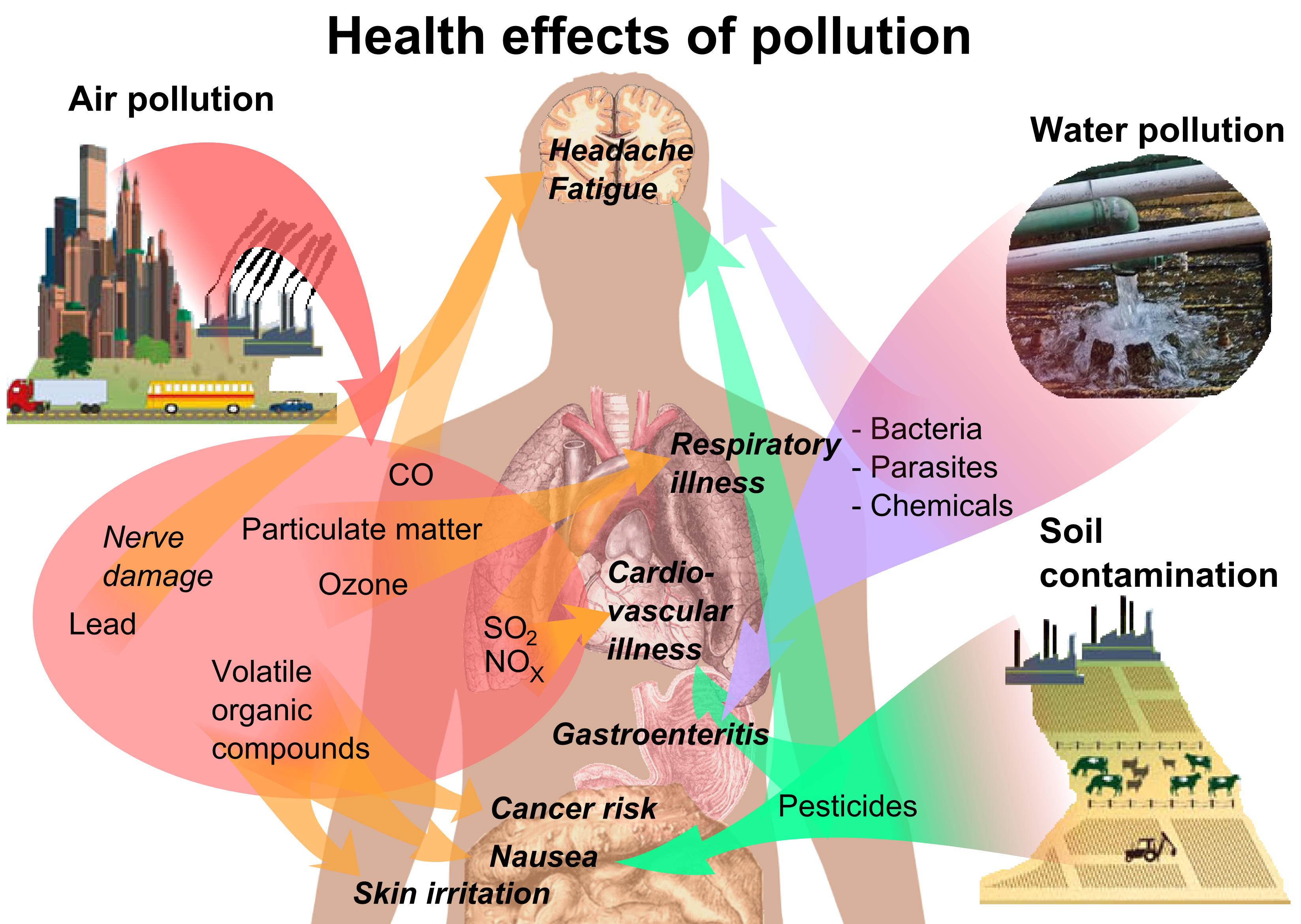 Index of environment pollution. Healthy clipart heath