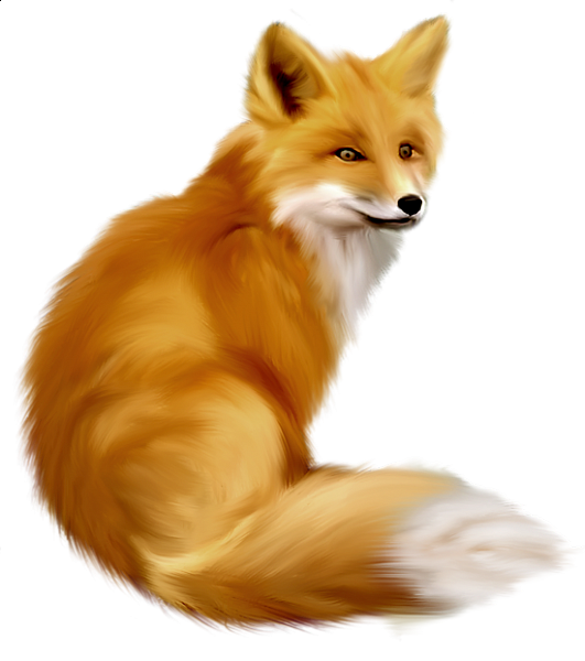 Woodland clipart animated fox. Gallery free picture animals