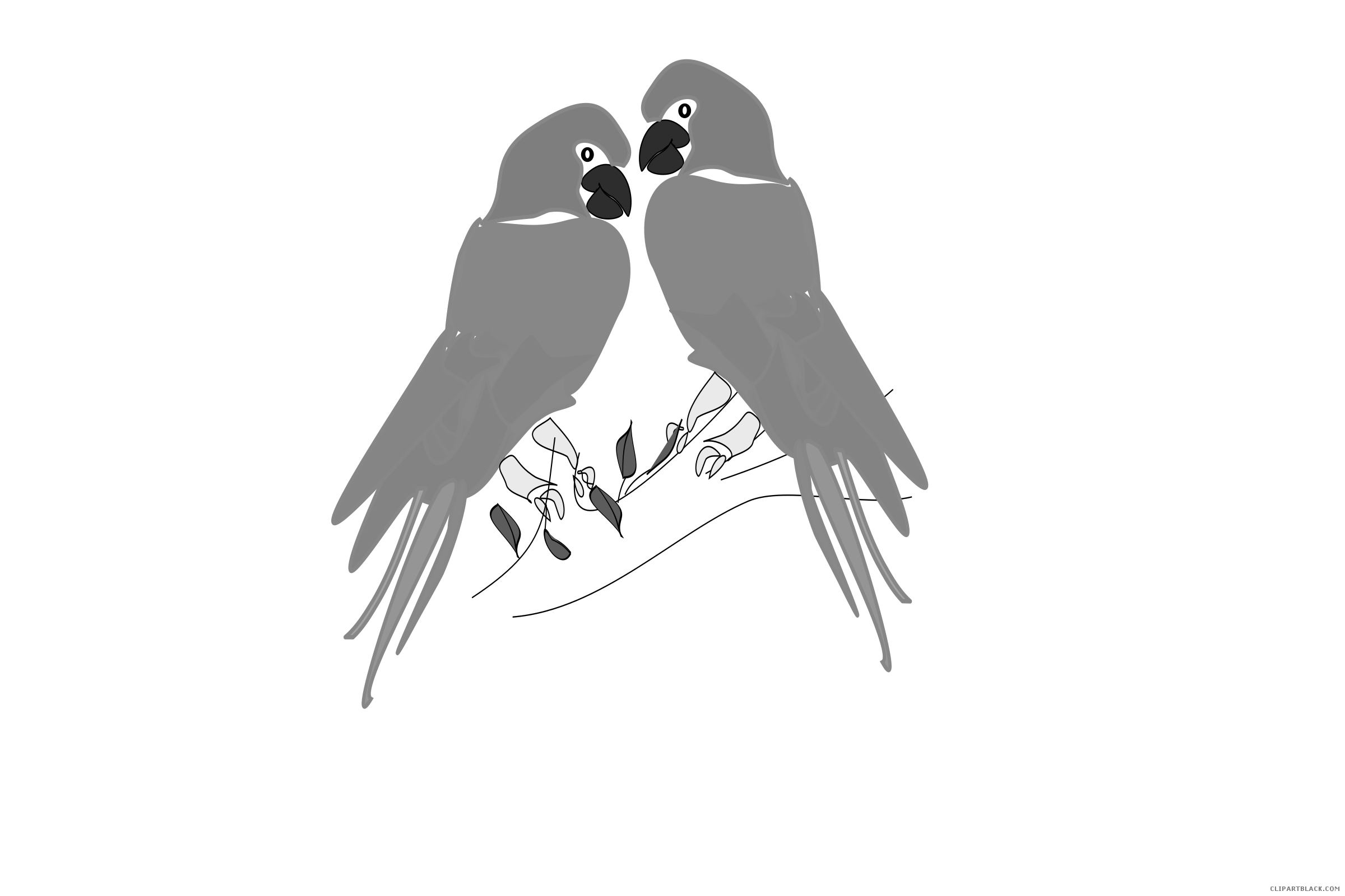 Grayscale parrot animal free. Cinema clipart black hawk