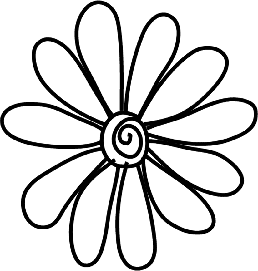 Common daisy drawing flower. Photographer clipart doodle