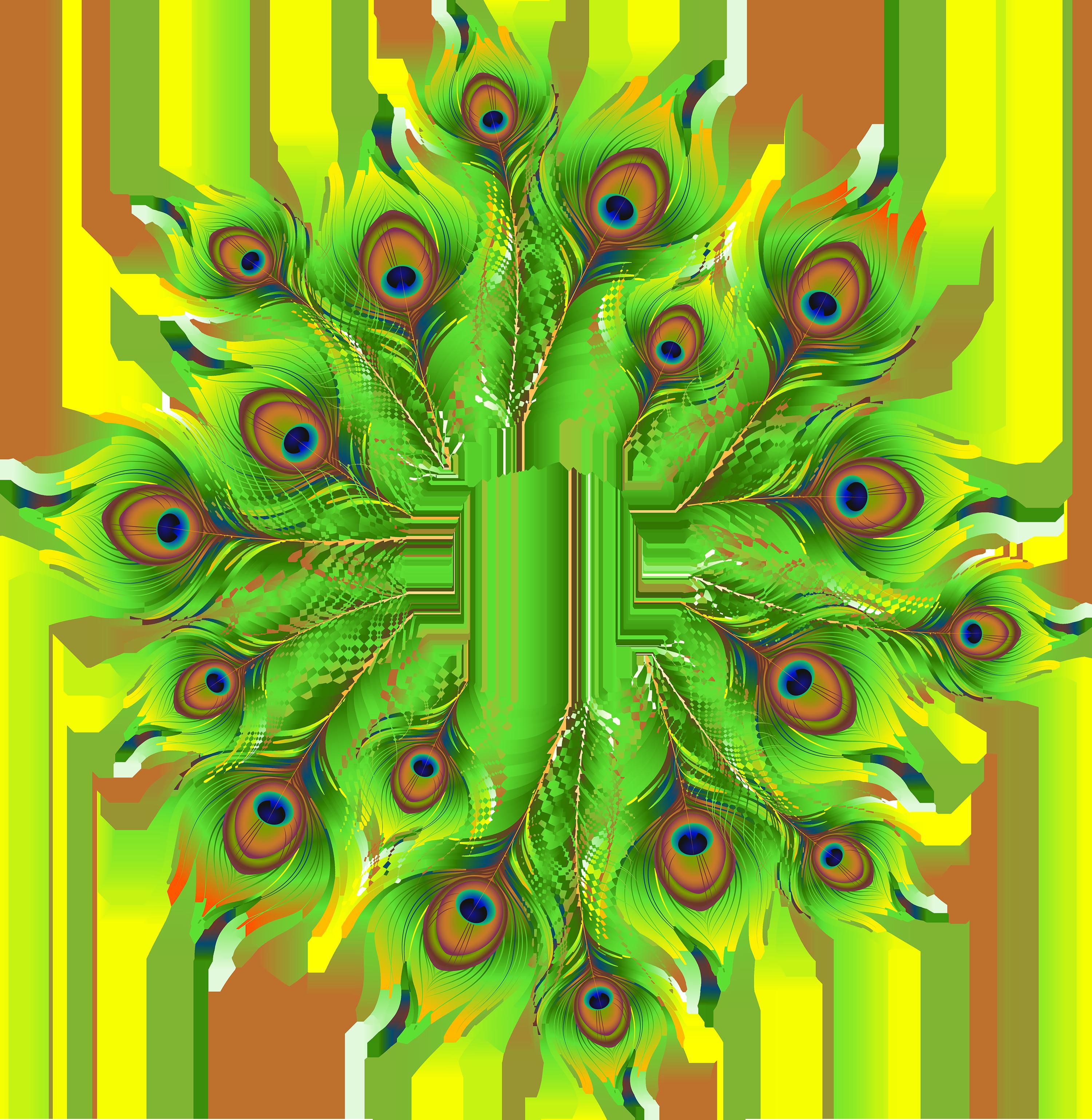 Flutes clipart peacock feather. Decoration png clip art