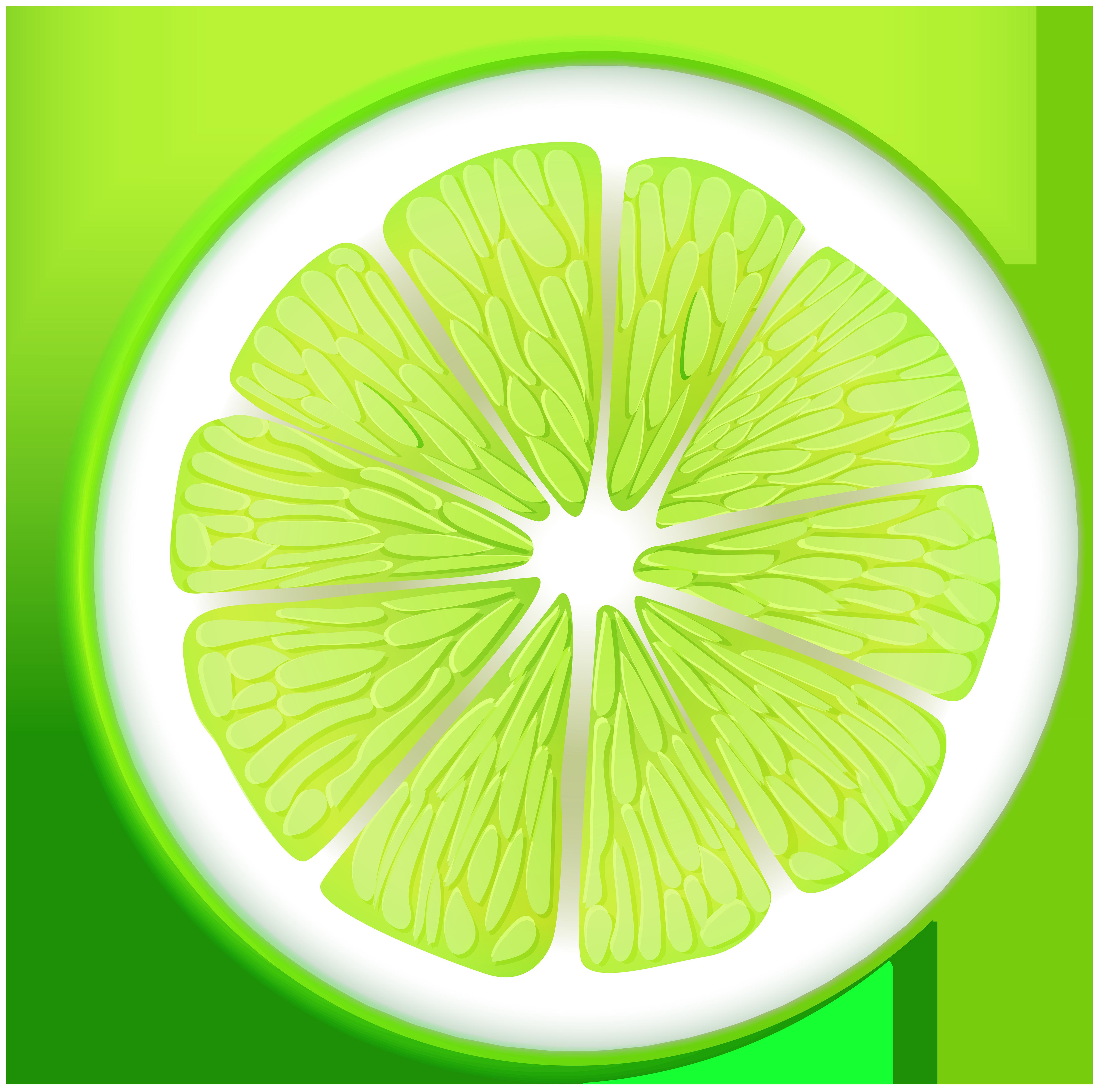 Lime transparent png clip. Circle clipart fruit