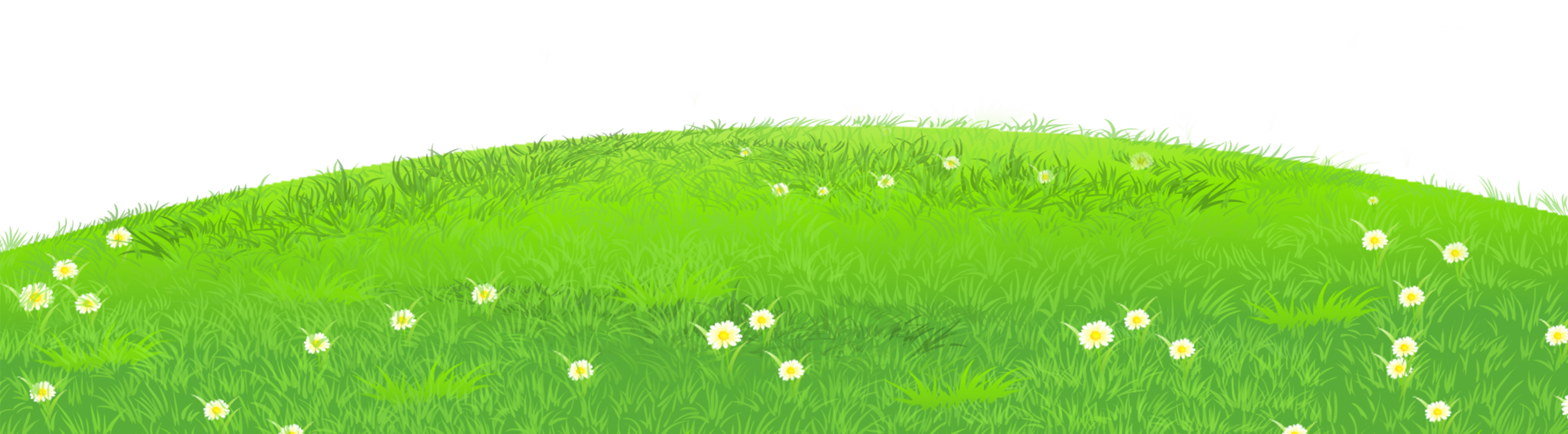 Lake clipart grassland. Grass with daisies png