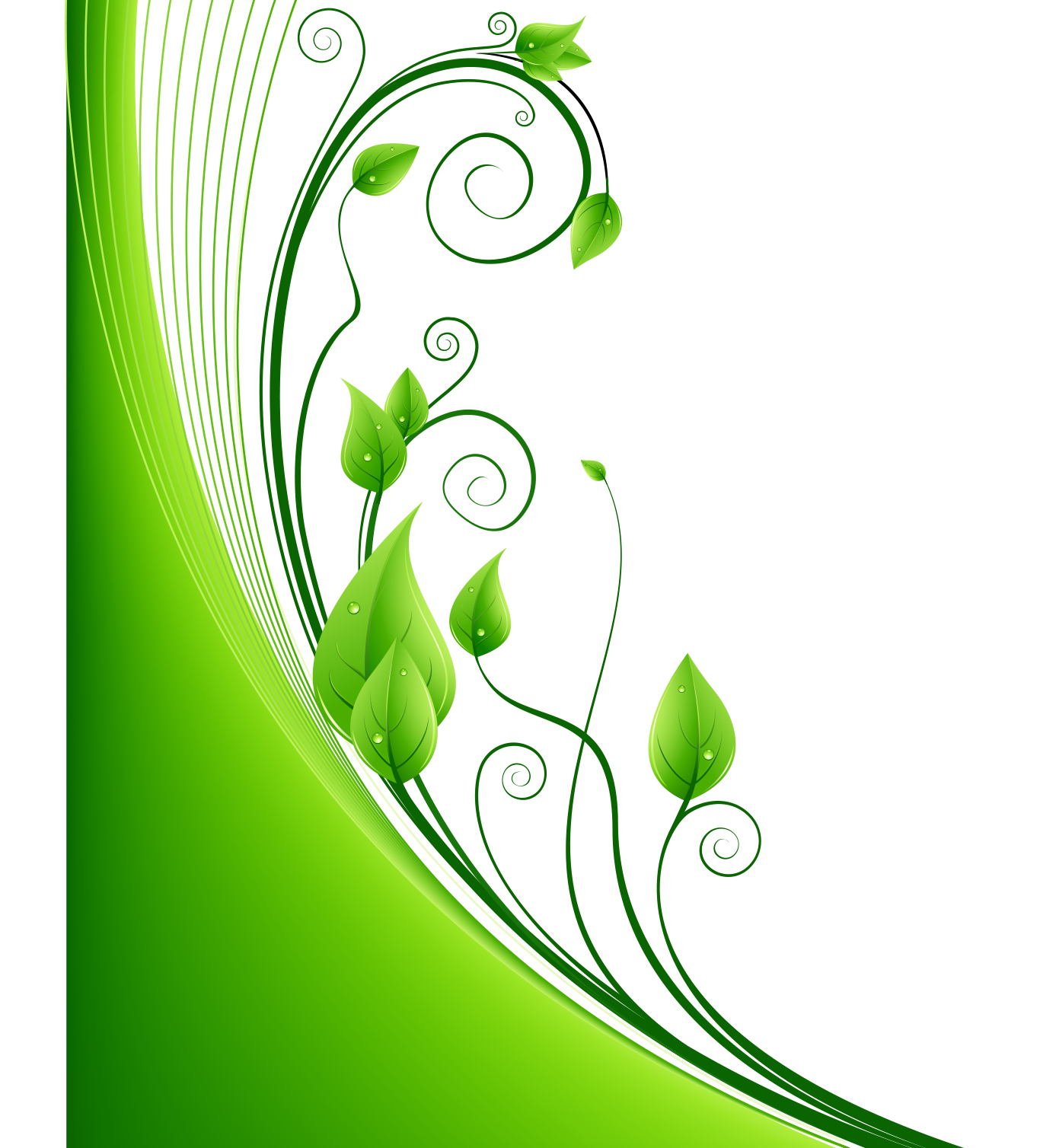 Green leaf euclidean vector. Circle clipart greenery