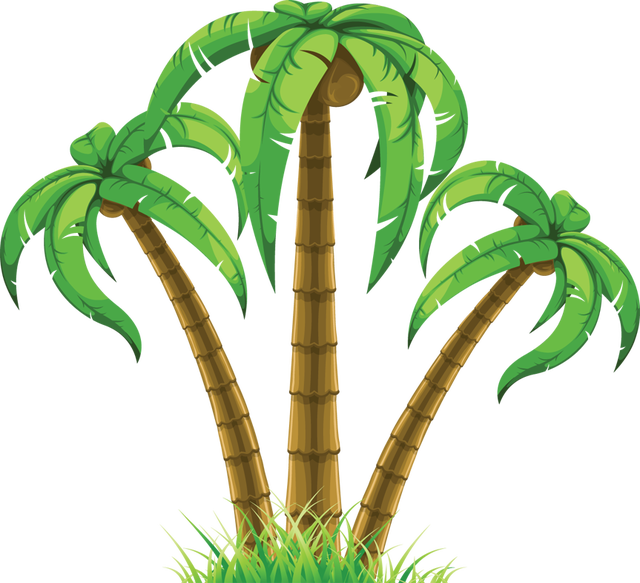 Palm clipart tree egypt. Web design development pinterest