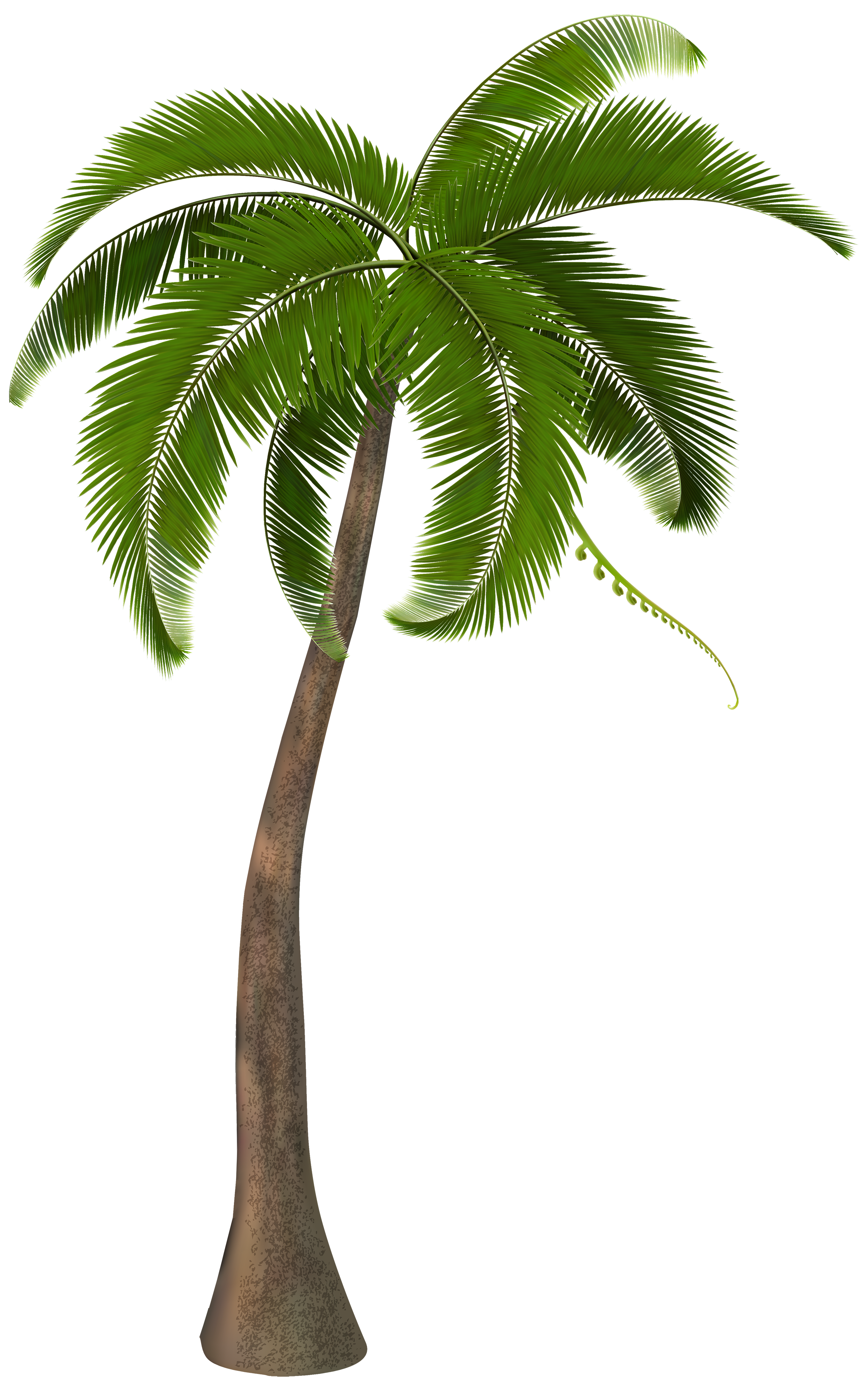 Palm clipart 8 bit. Pin by gift on