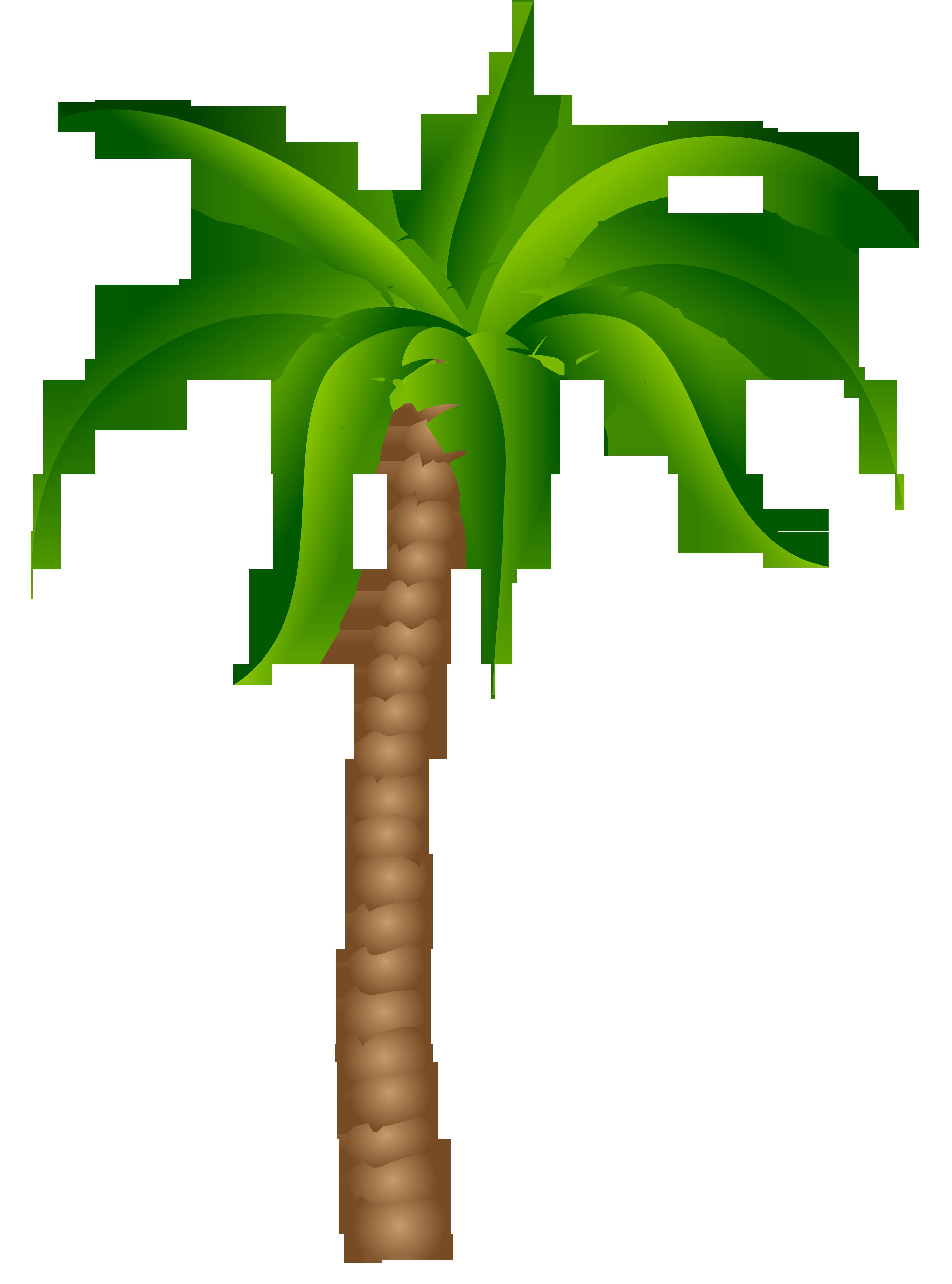 collection of palm. Sunset clipart hawaiian sunset