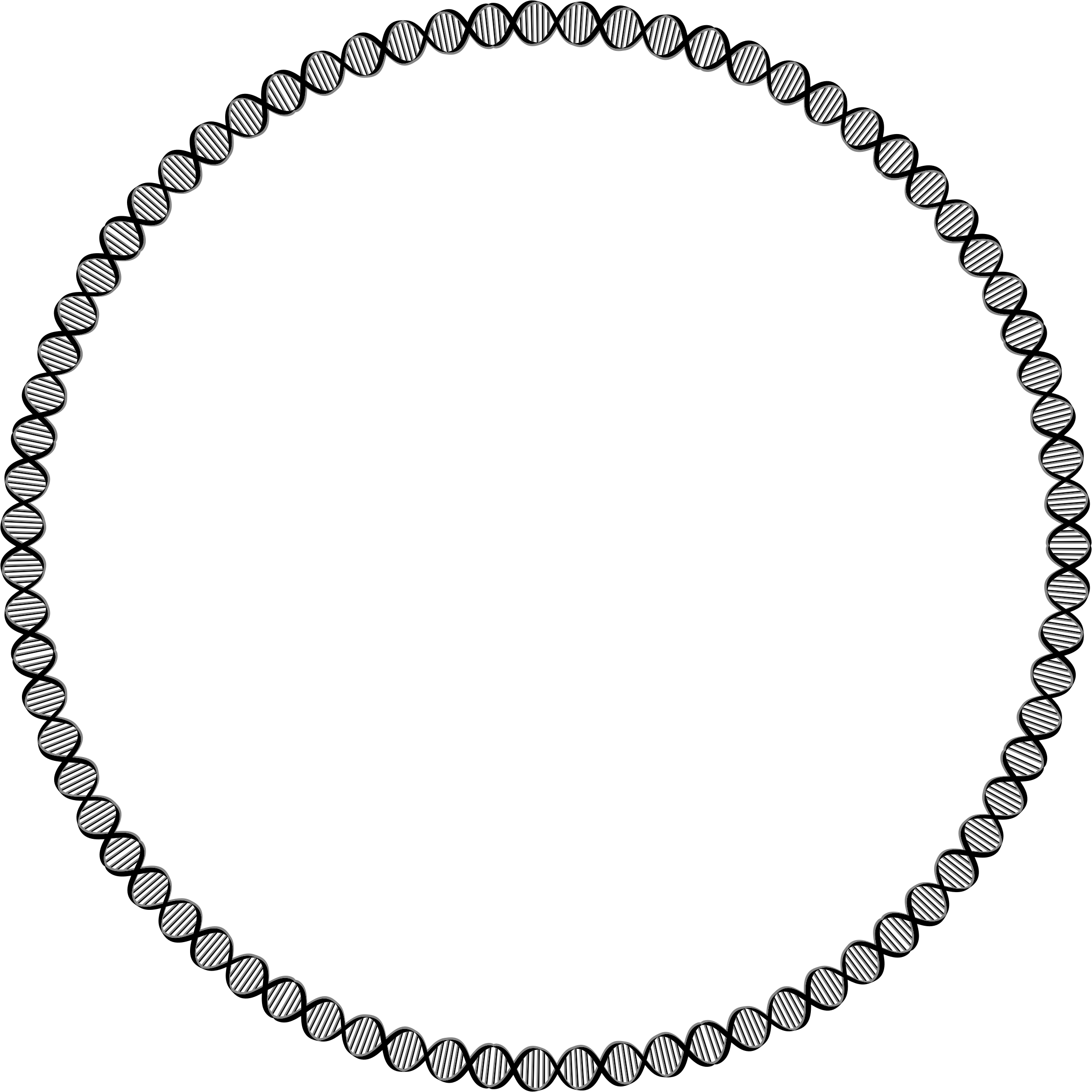Circle clipart plain. Dna big image png