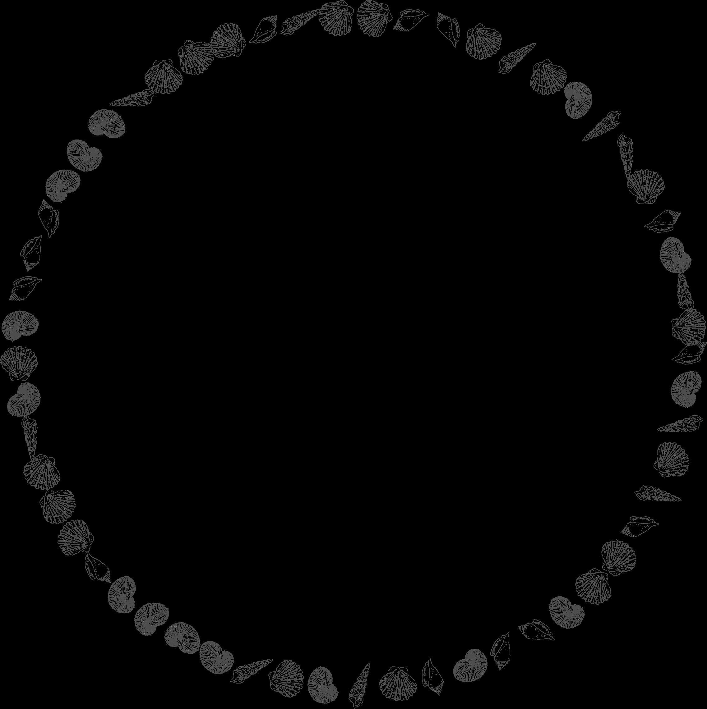 Clipart circle seashell. Round shells frame big