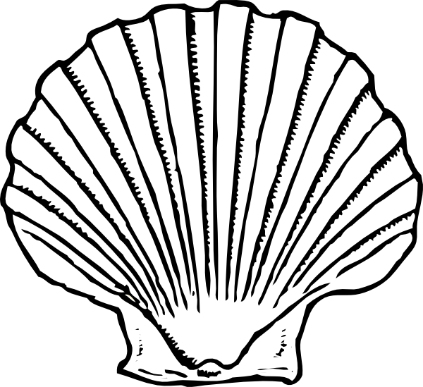 Sea shell silhouette at. Clipart shapes seashell