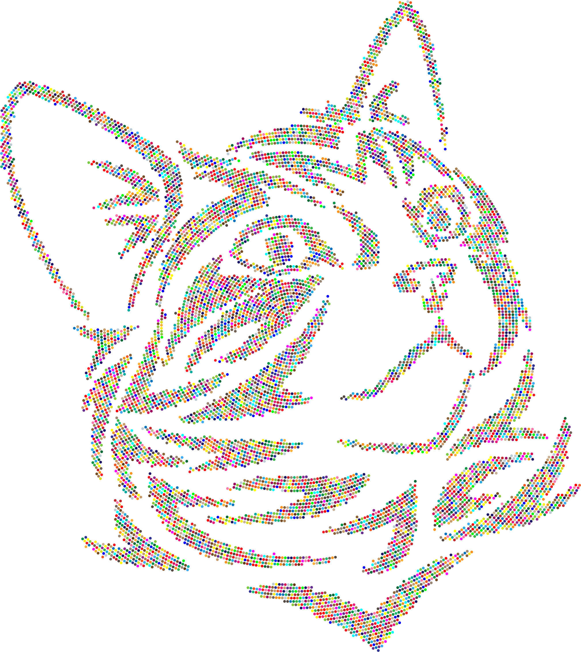 Kitten colorful dots no. Circle clipart tribal