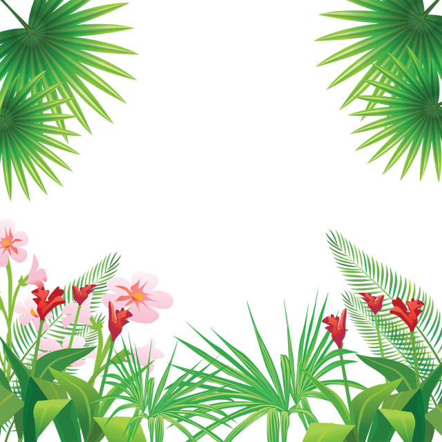 Win clipart nature. Tropical leaves flowers frame