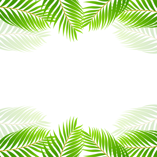 Palm clipart border. Green tropical leaf vector