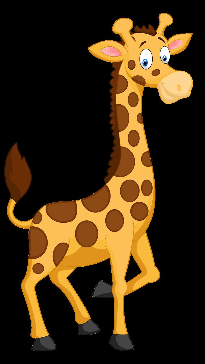 Clipart zebra giraffe.  png pinterest clip