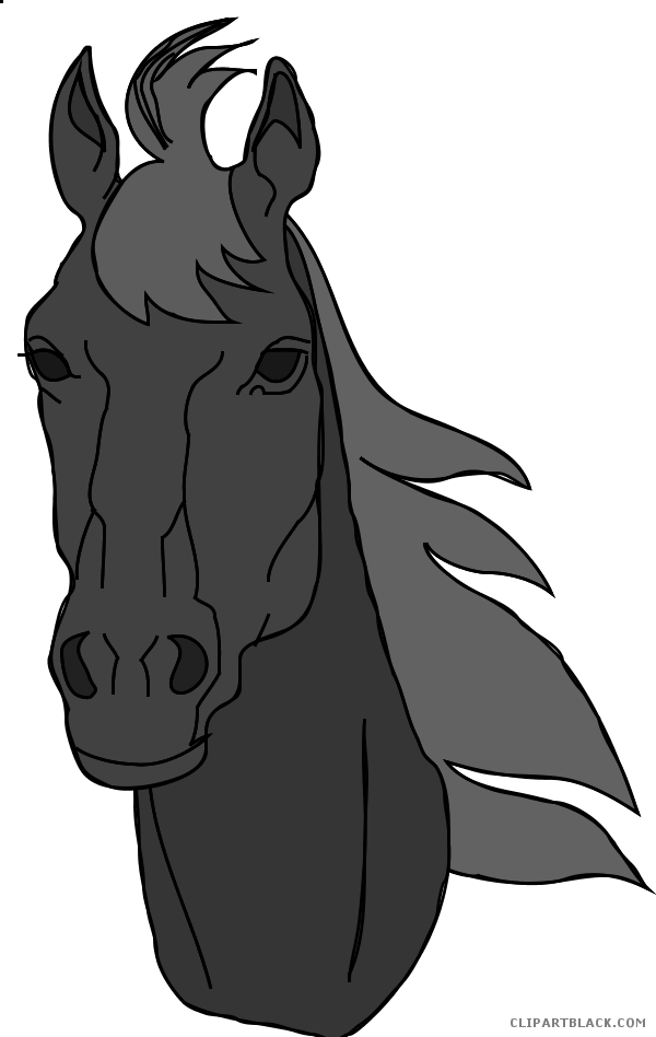 Animal free black white. Face clipart horse