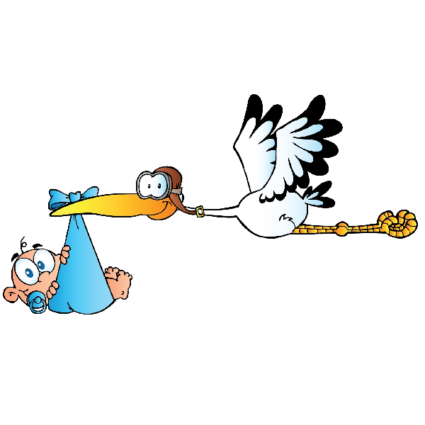 Stork carrying baby boy. Einstein clipart face