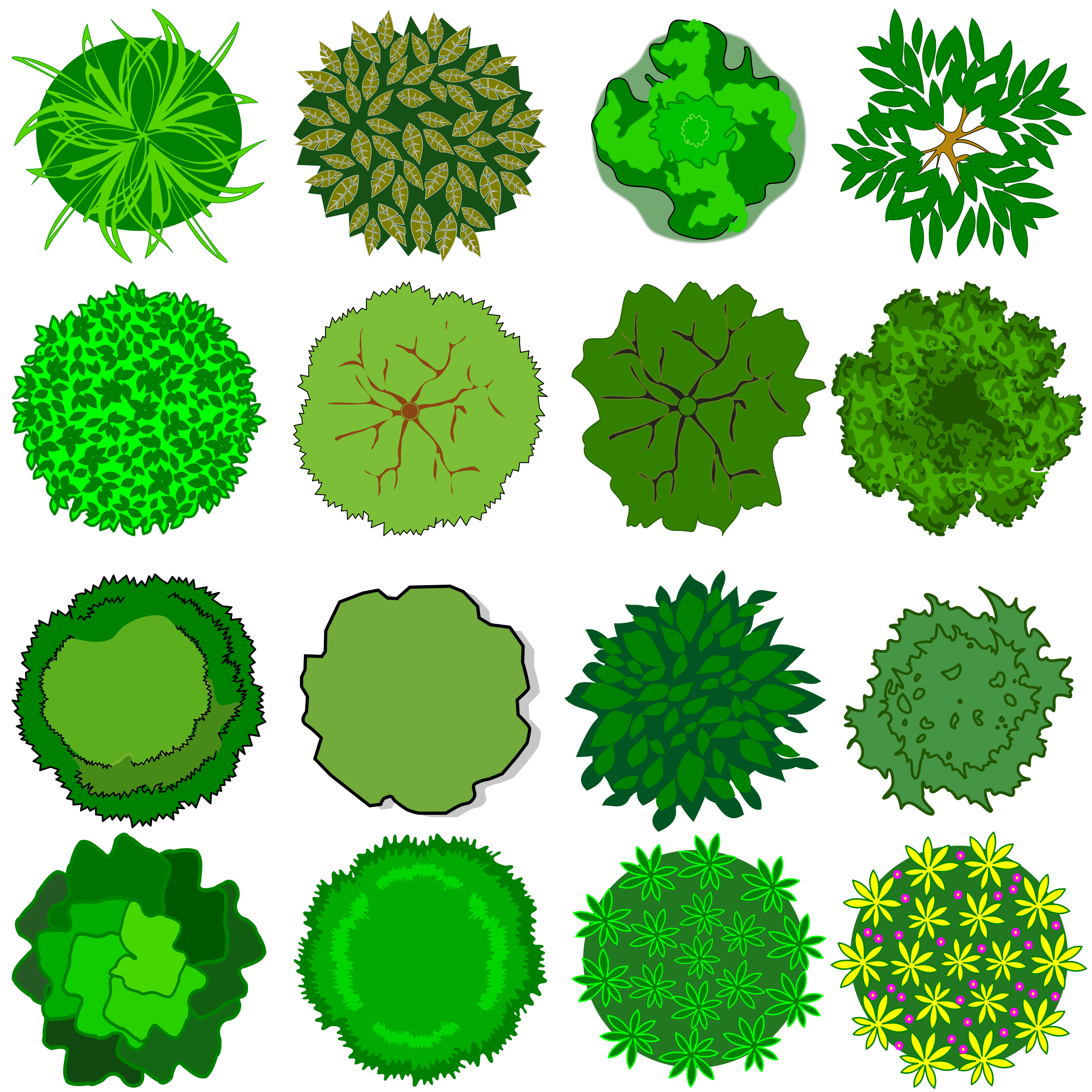 collection of tree. Kind clipart top view