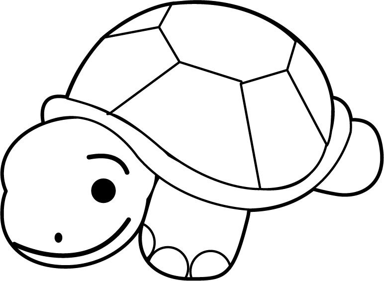 Clam black and panda. White clipart turtle