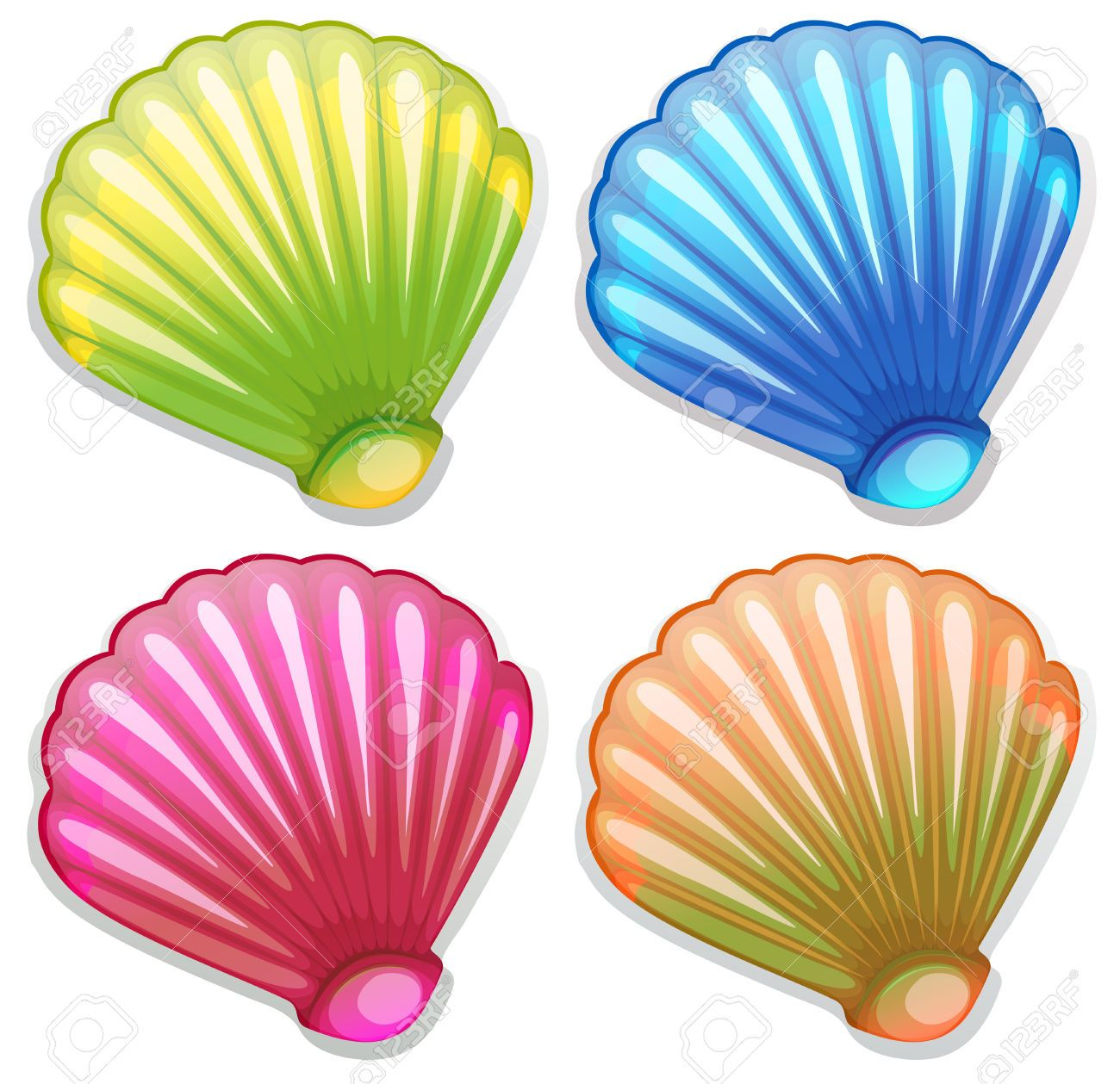 Seashell seashells in little. Shell clipart colorful