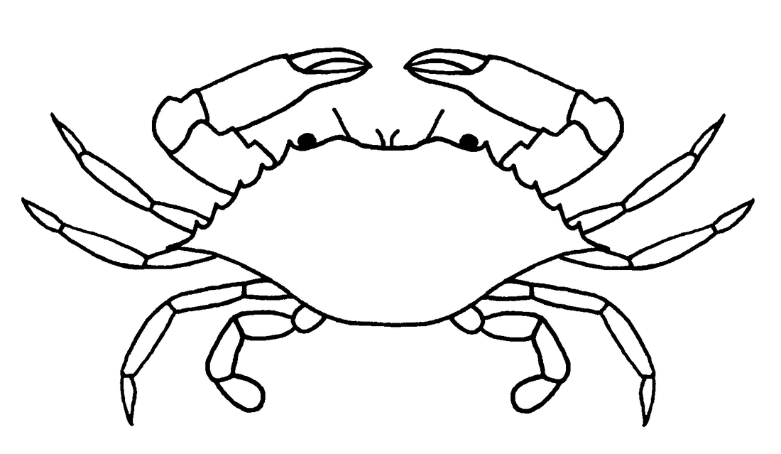 Outside the quadrat picture. Crabs clipart crab claw