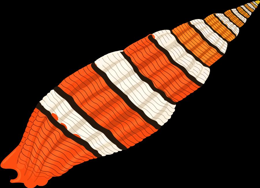 Orange clipart seashell. Medium pixel vector clip