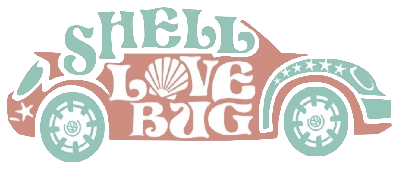 Shell clipart clamshell. Shelling tips where to