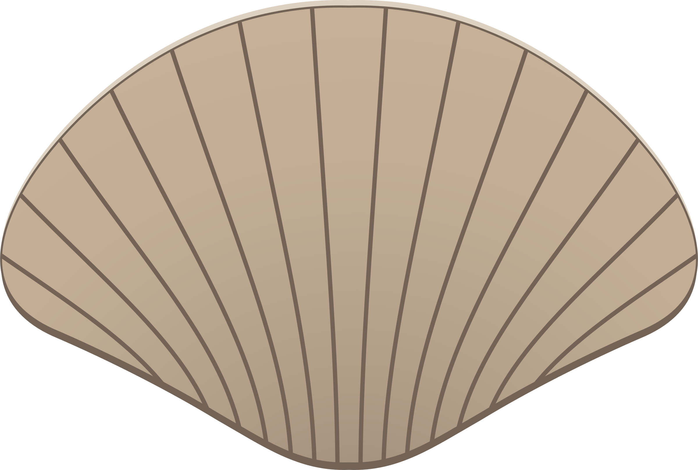Shell clipart shell scallop. Big image png