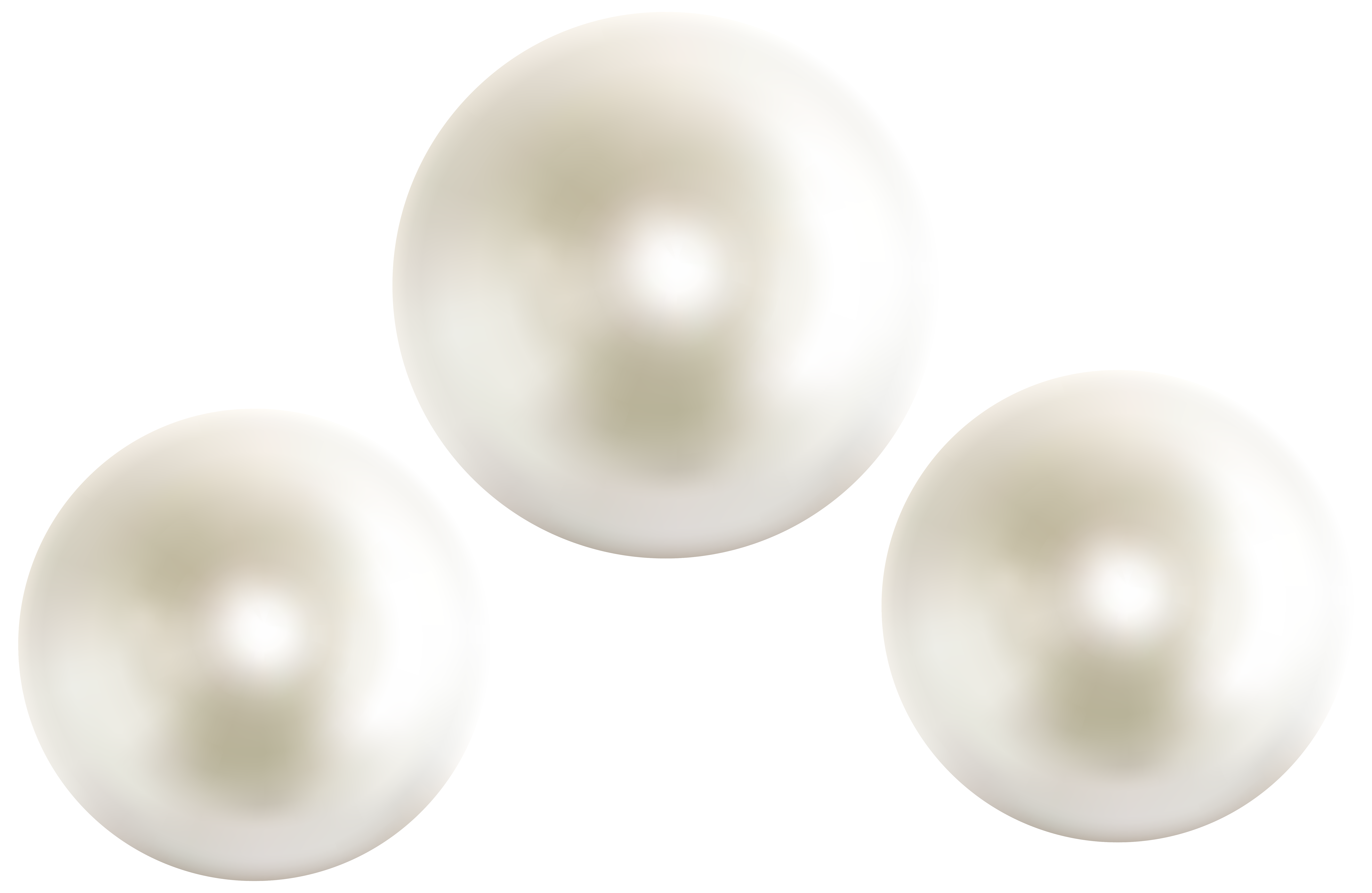 Shell clipart pearl clipart. Pearls png clip art