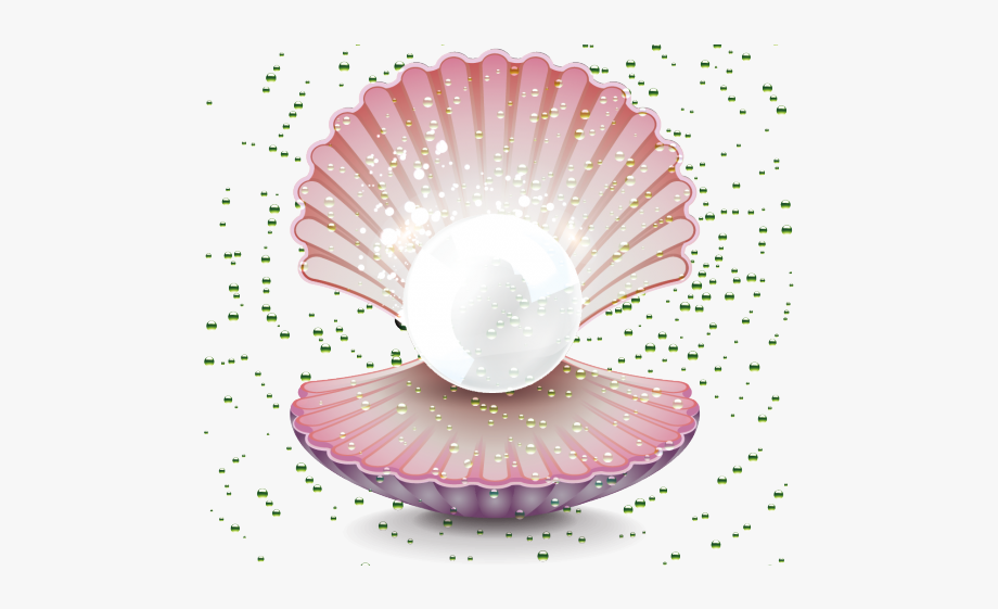 Oyster clipart pink pearls. Clams pearl drawing