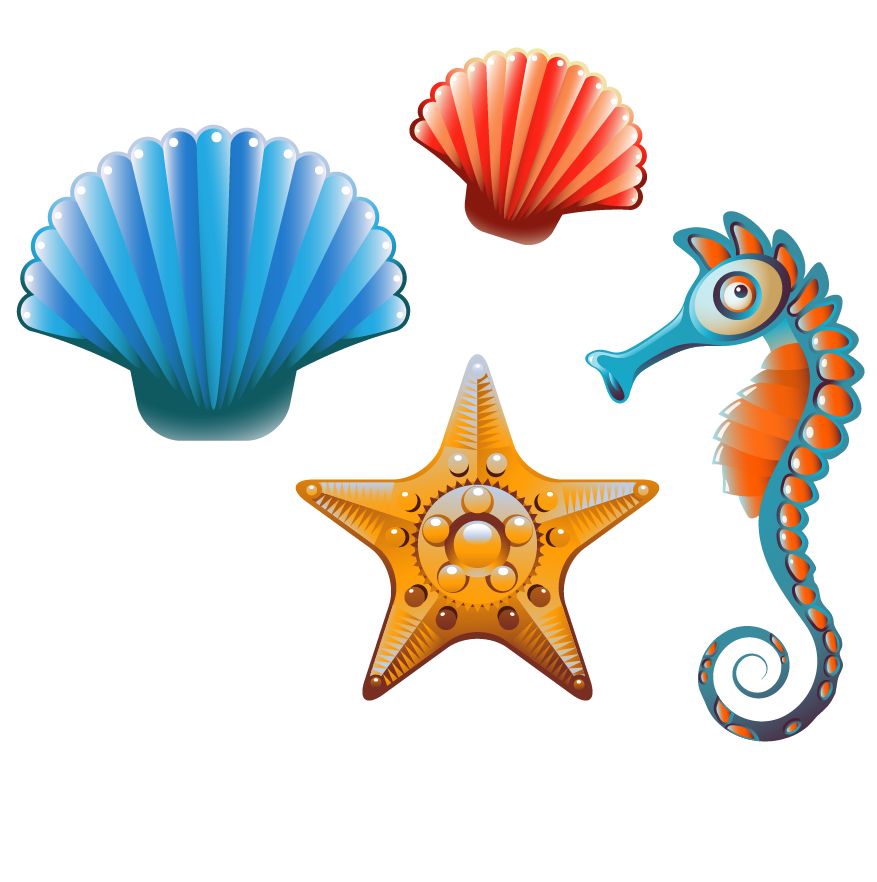 Clam seashell cartoon clip. Shell clipart sea animal