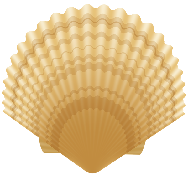 Clam clip image gallery. Shell clipart art deco