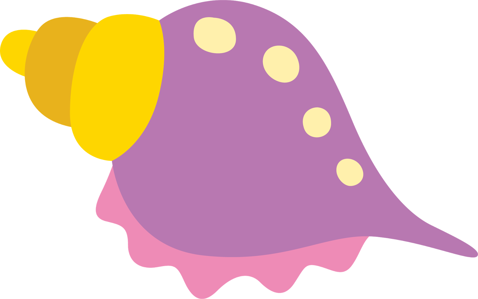 collection of seashell. Shell clipart cartoon