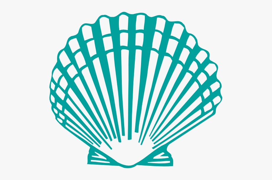 Shell clipart clamshell. Scallop clip art clam