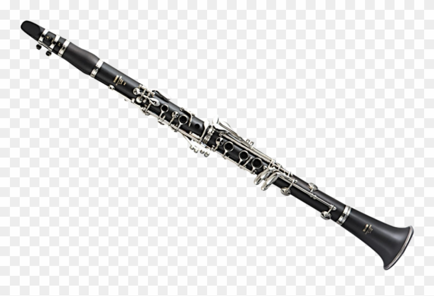 Drawing clarinete yamaha ycl. Clarinet clipart beautiful