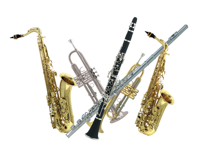 Clarinet clipart instrument orchestra. Band step up drive