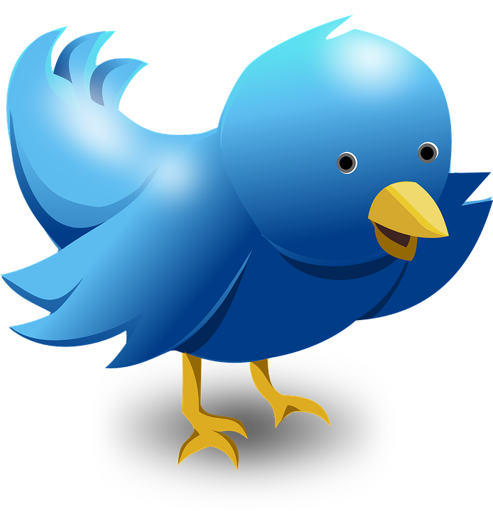 Twitter logo png transparent.  way to use