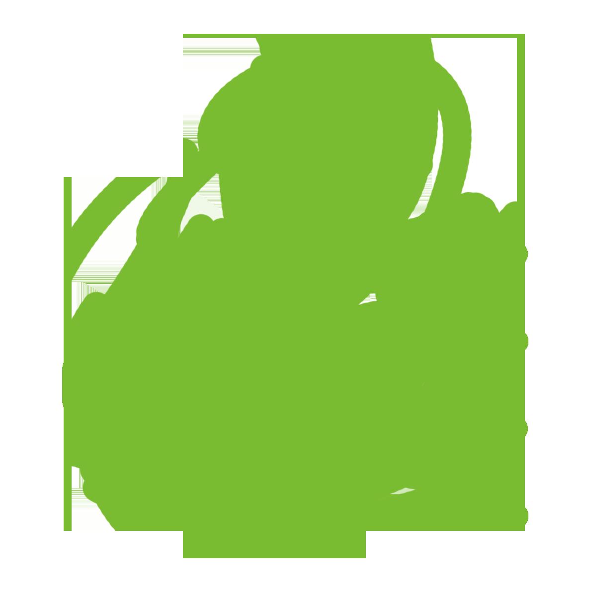 Curriculum clipart curriculum development. Welcome to green ninja