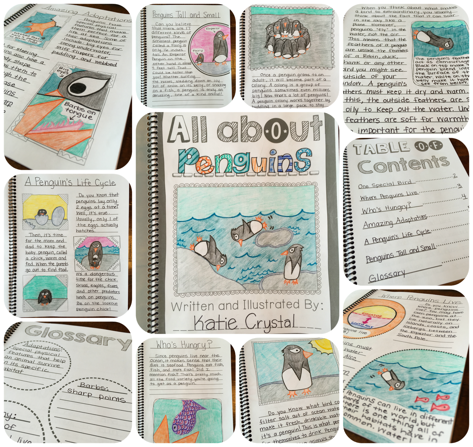 Study clipart book report. My animal research project