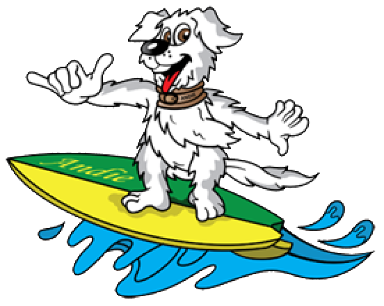 Animal hotel pet boarding. Clean clipart caretaker