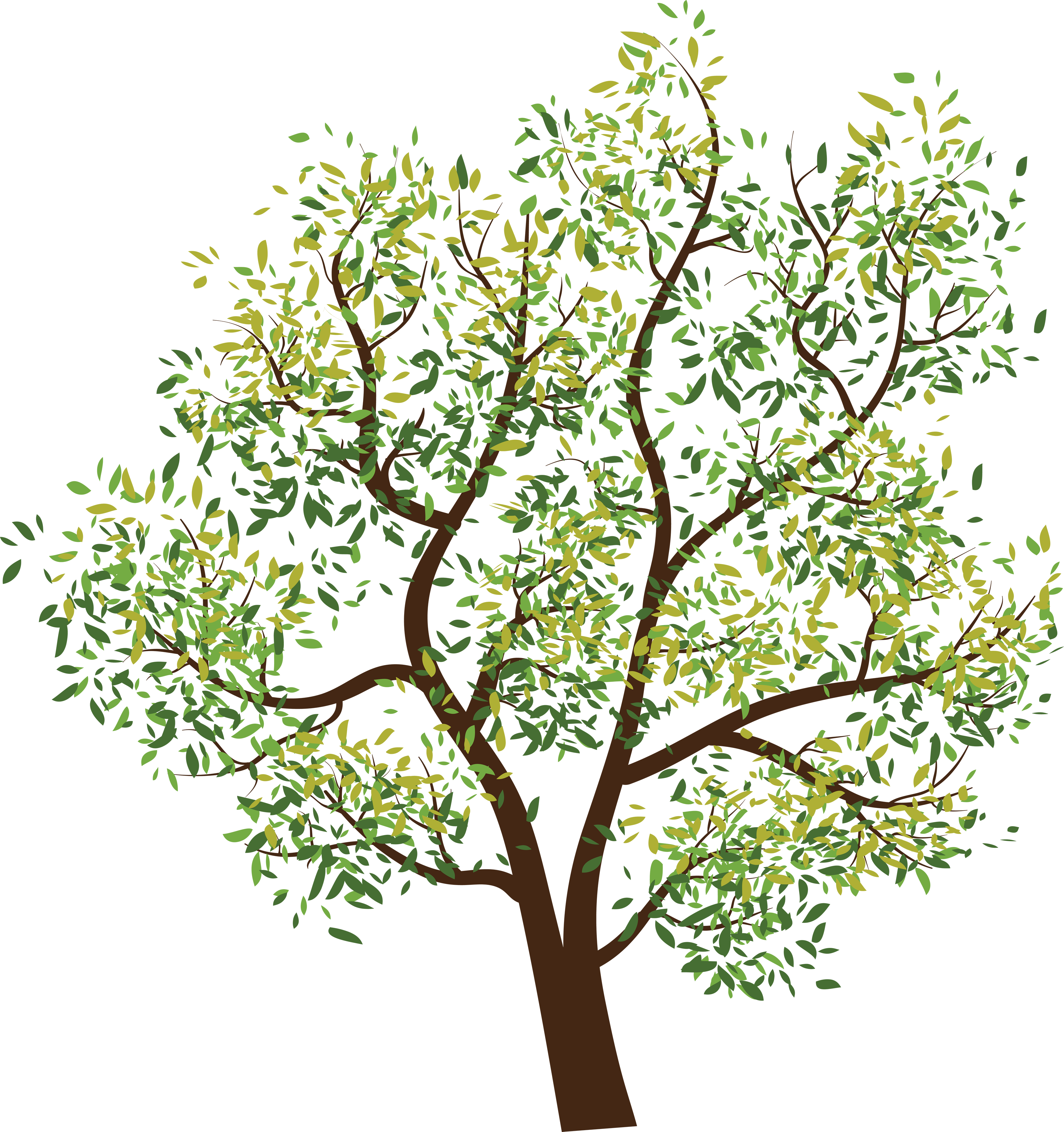 Image id png photo. Plant clipart tree