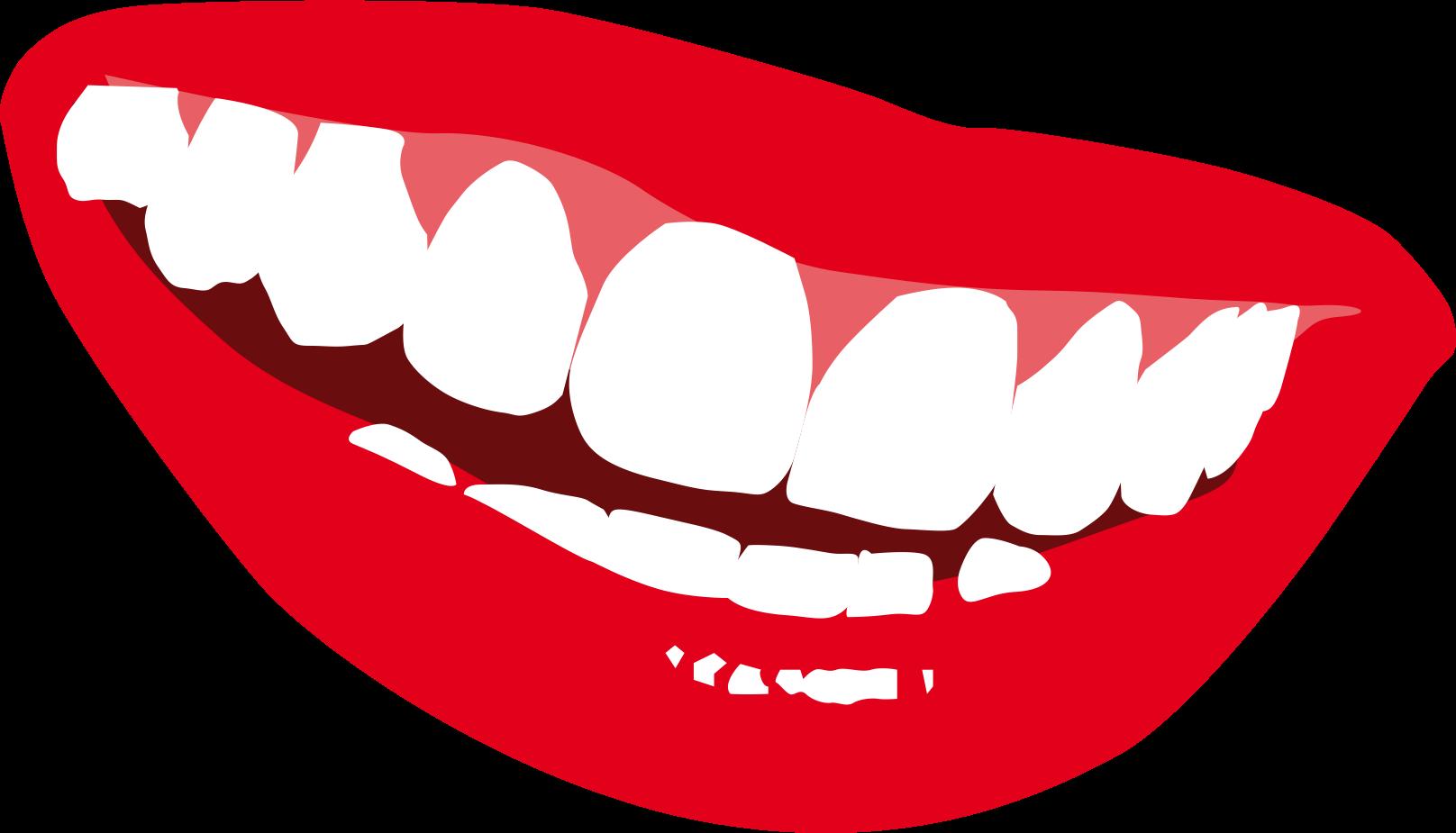 Smile clip art cartoon. Tooth clipart cute