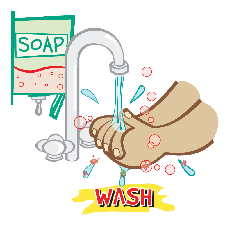 collection of wash. Clipart fruit washing