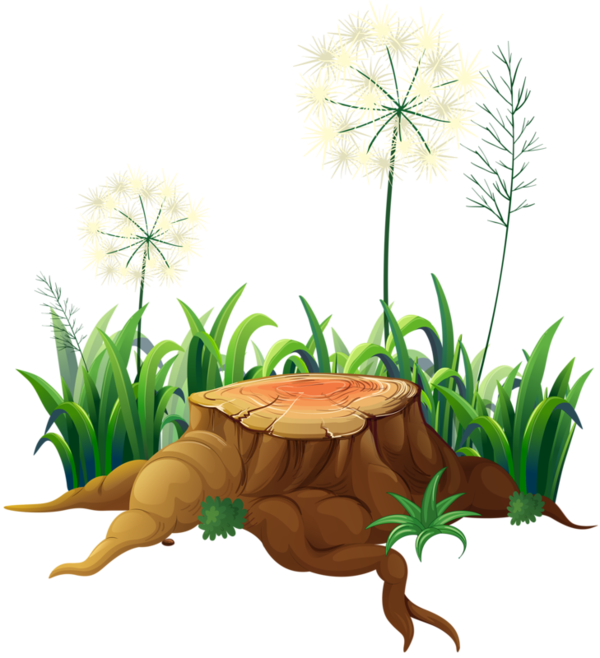 aa f png. Landscape clipart fairy