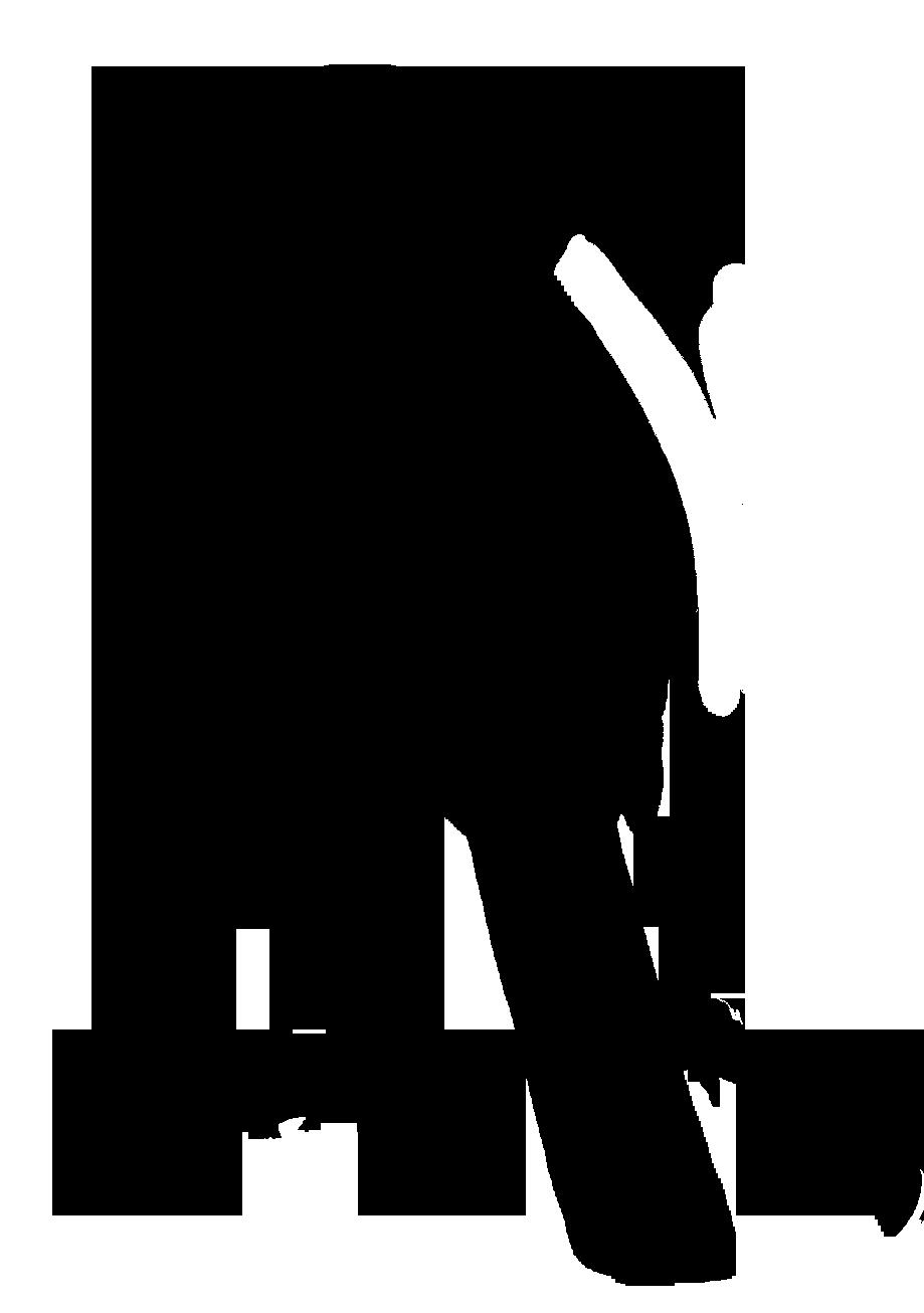 Crow clipart victorian. Bird silhouettes black silhouette