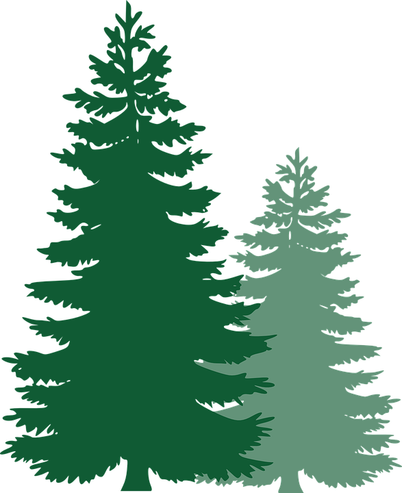 Tree clipart forest. Free image on pixabay