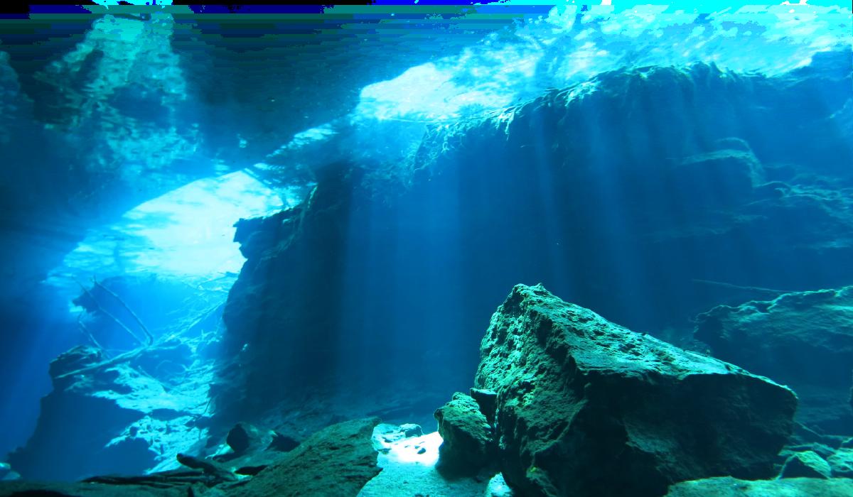 Ocean clipart underwater. Ftestickers sea nature report
