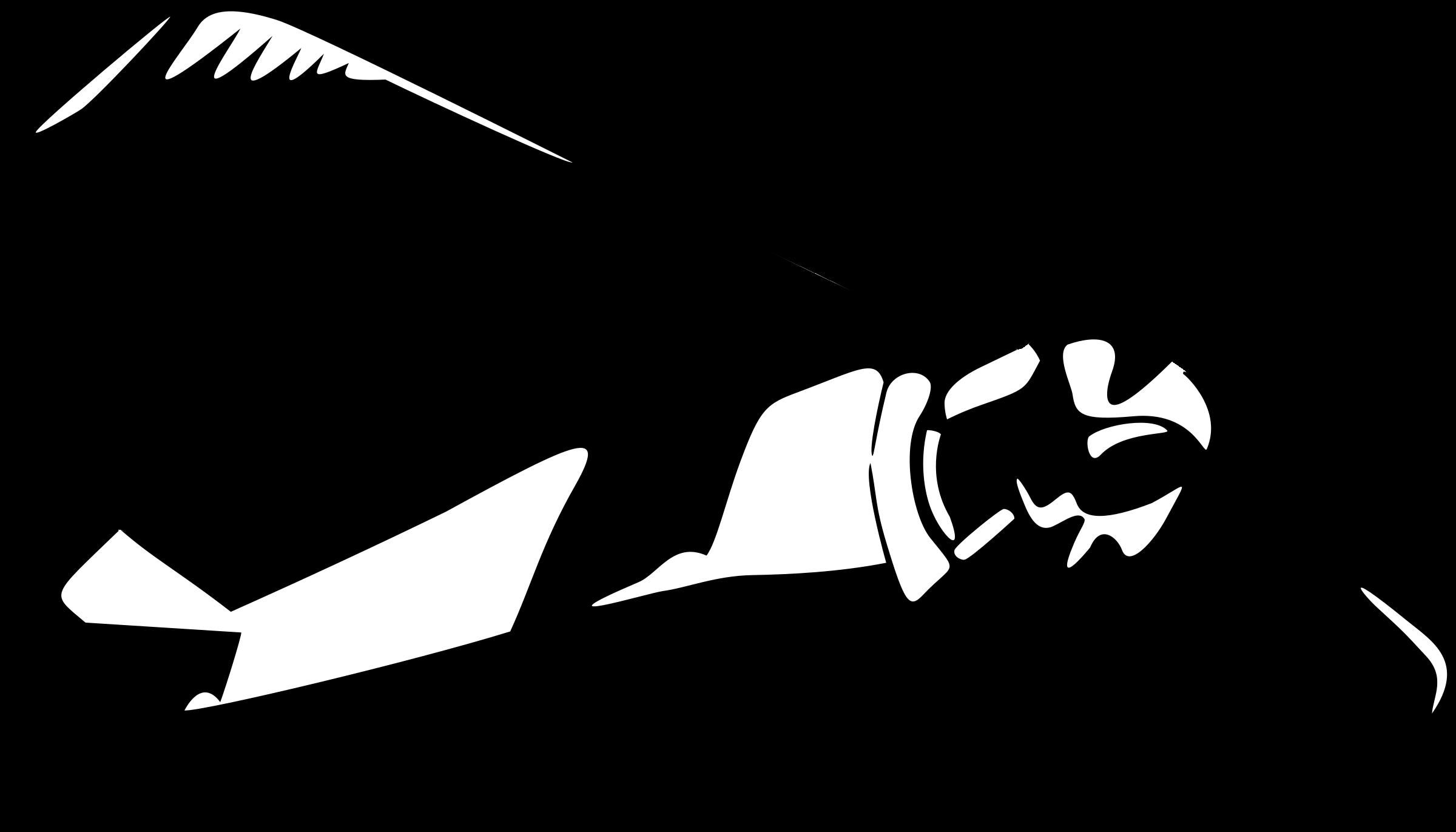 collection of ww. Clipart plane stencil